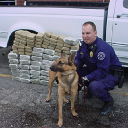 Drug Detection Dog Training